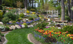 Napfényes Étterem és Rendezvényterem - Ne csak várjuk a tavaszt - Ökologikus kerttervezés