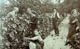 Esernyős - Wine Time – Biodinamikus borok kóstolása