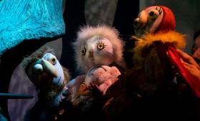 Kolibri Fészek - A bagoly, aki félt a sötétben