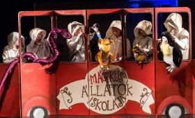 Kolibri Színház - Mágikus állatok iskolája