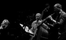 Budapest Music Center - Festival de la Francophonie | Wood  Rita Marcotulli (F/I)
